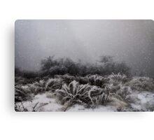 """Winter Snowstorm"" Metal Print"