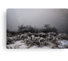 """Winter Snowstorm"" Canvas Print"