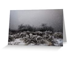 """Winter Snowstorm"" Greeting Card"