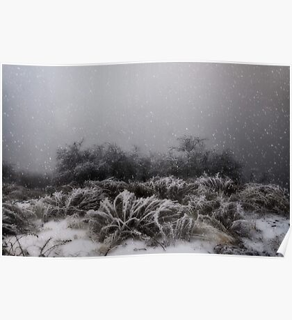"""Winter Snowstorm"" Poster"