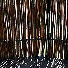 Bamboo screen by Maggie Hegarty