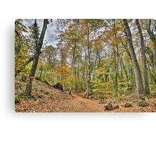 Walking Throw Jordan's Beech Wood Canvas Print