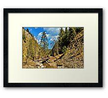 in ravine Homole Framed Print