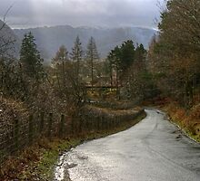 Road To Borrowdale by Jamie  Green