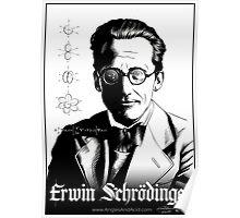 Erwin Schrödinger Poster