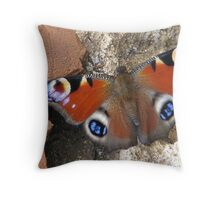 The European Peacock Butterfly  Inachis io Throw Pillow