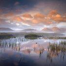 Scotland - Scotch Mist 2 by Angie Latham