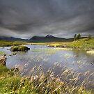 Scotland- Light & Wind by Angie Latham