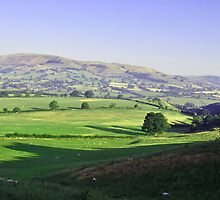 Berwyn Hills by Care Johnson