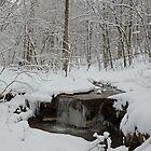 Through the Snow by Lynn Gedeon