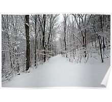 Snowy Entrance Poster