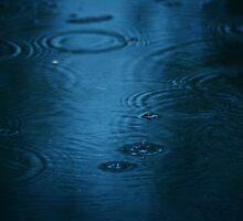 Rain Puddle by Care Johnson