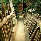 Wooden bridge by Arie Koene