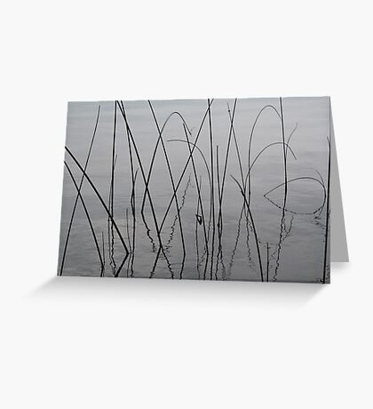 Reeds Greeting Card
