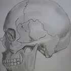 Side Skull by NatalieMirosch