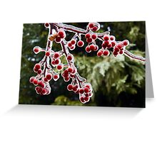 Icy Crab Apples Greeting Card