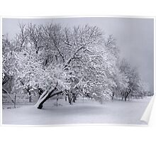 When Winter Takes Over... Poster
