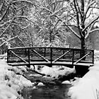 Snow Covered Foot Bridge by Jennifer Hulbert-Hortman