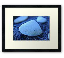 Beach Pebbles  Framed Print