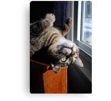 Looking Out Upside Down Canvas Print