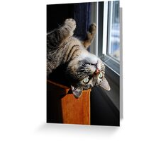 Looking Out Upside Down Greeting Card
