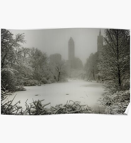 Central Park SnowStorm Poster