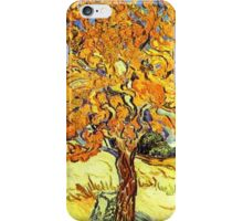 The Mulberry Tree, Vincent van Gogh iPhone Case/Skin