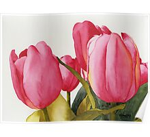 Tulips For You Poster