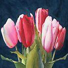 Six Tulips by Ken Powers