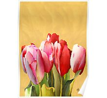 A Sign of Spring Poster