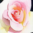 Beautiful Rose by Ken Powers