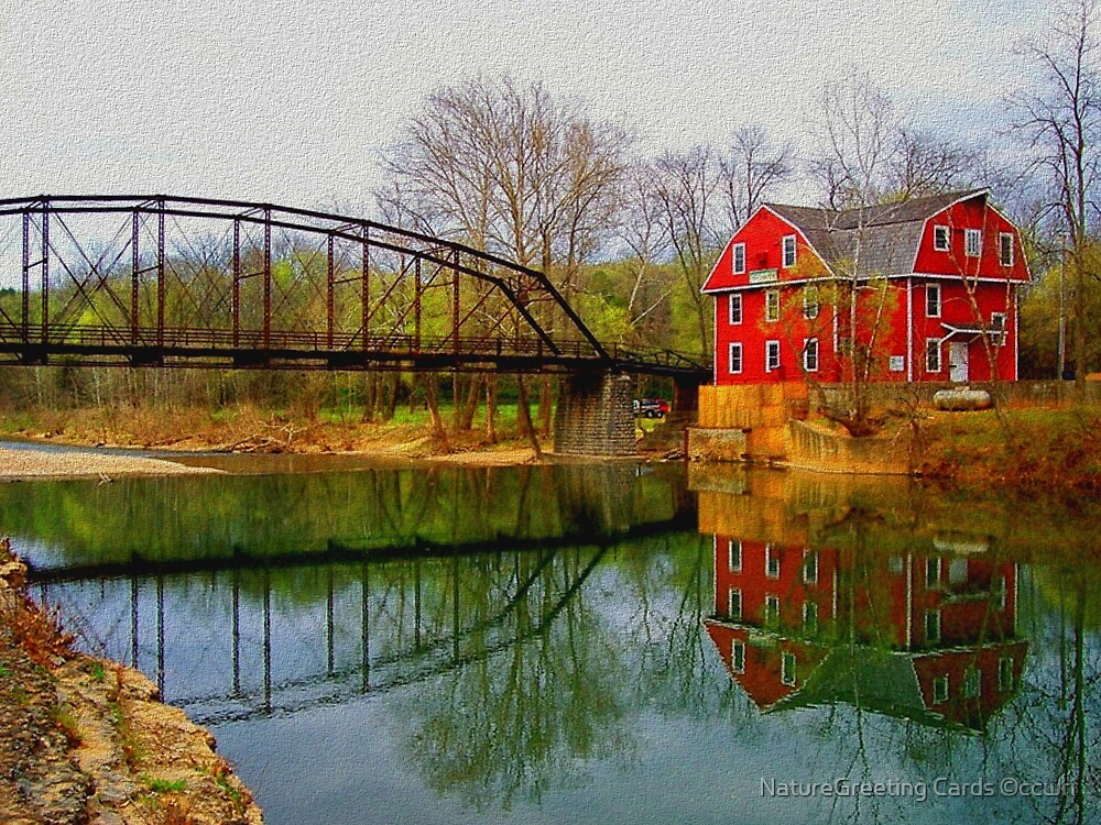Down By The Old Mill Stream by NatureGreeting Cards ©ccwri
