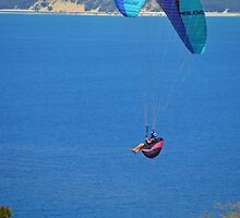 Rainbow Beach Paragliding by TheaShutterbug