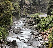 Otira Gorge by coffeebean
