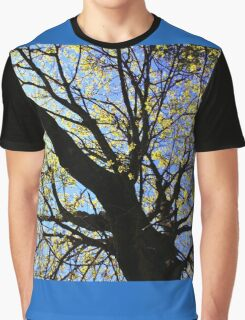 Looking Skyward Graphic T-Shirt