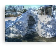 My Neighbor's Igloo Canvas Print