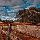 A dry land by GeoffSporne