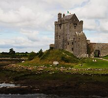 Dunguaire Castle Kinvara County Clare Ireland by Sean  Carroll
