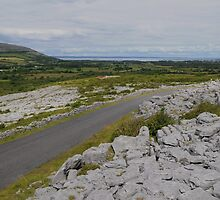 The Burren in County Clare Ireland by Sean  Carroll