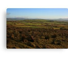 On Fearn Hill Canvas Print