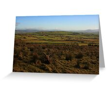 On Fearn Hill Greeting Card