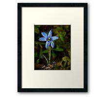 Wildflower Smiles Framed Print