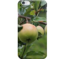 Nanna Apples iPhone Case/Skin