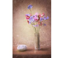 Sweat Pea Photographic Print