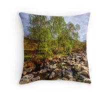 Barrow Beck Throw Pillow