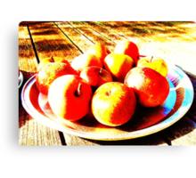 Bowl of Apples- Unique Photography Canvas Print
