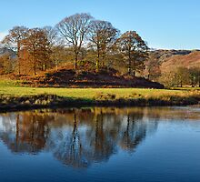 River Brathay Reflections by towerphotos