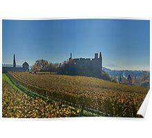 Burkheim, Kaiserstuhl - the castle Poster