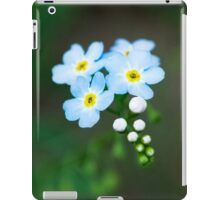 Summer Babies iPad Case/Skin