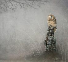 Misty Twilight Owl by Georgina Bailey